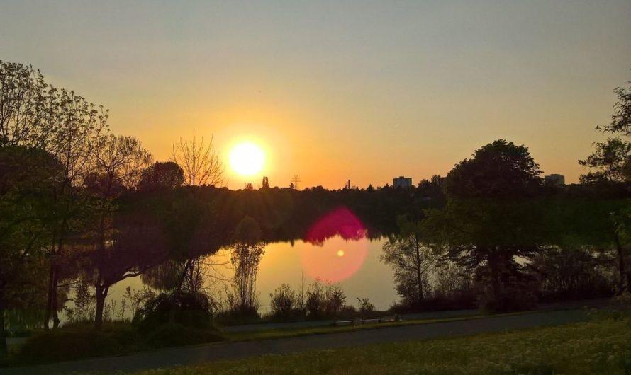 Ufer und Umgebung der Vogelstangseen als Schutzgebiete